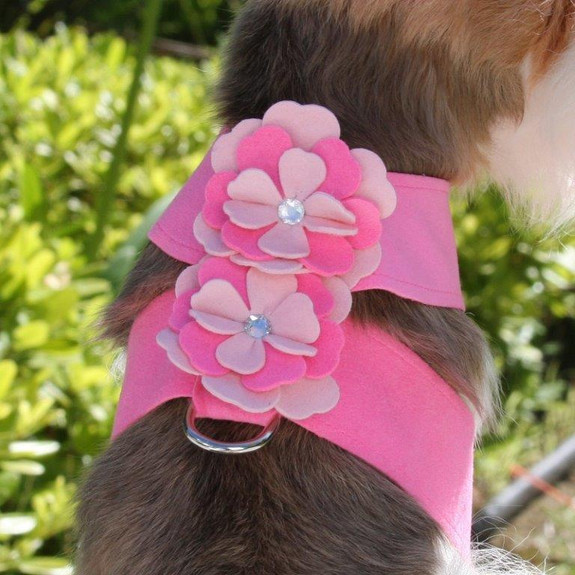 Alexandra Flowers Tinkie Dog Harness