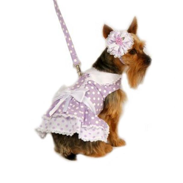 Dog Dress - Lavender Polka Dot Dress With Hat / Collar & Leash - LARGE