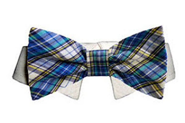 Dog Bow Tie - Isaac