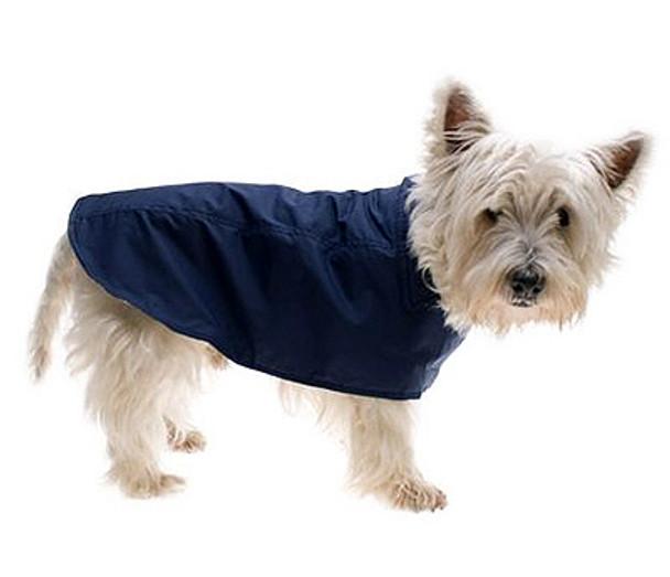 Dark Blue Dog Raincoat by Hamish McBeth