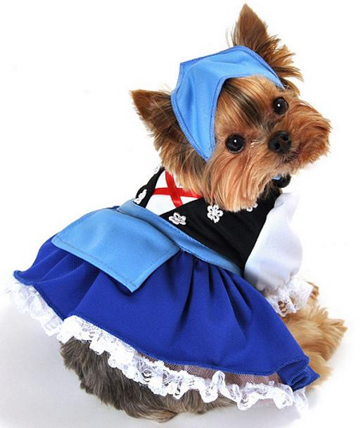 Gretchen Beer Maiden Dog Costume