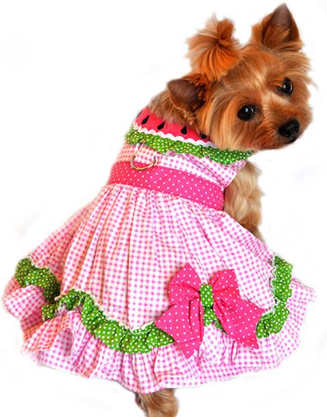 Watermelon Gingham Dog Harness Dress
