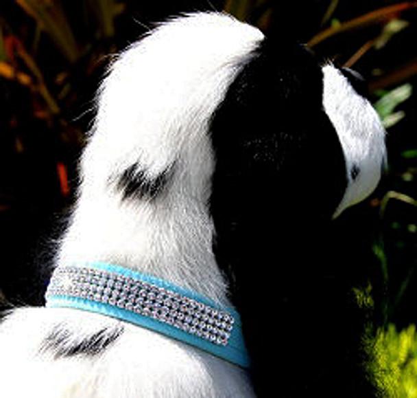 Wide 4 Row Giltmore Dog Collar - Susan Lanci