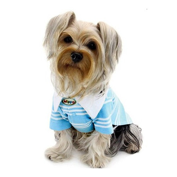 Aqua Blue Polo Dog Shirt