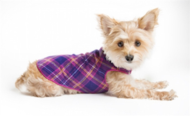 Gold Paw Stretch Fleece - Mulberry Plaid