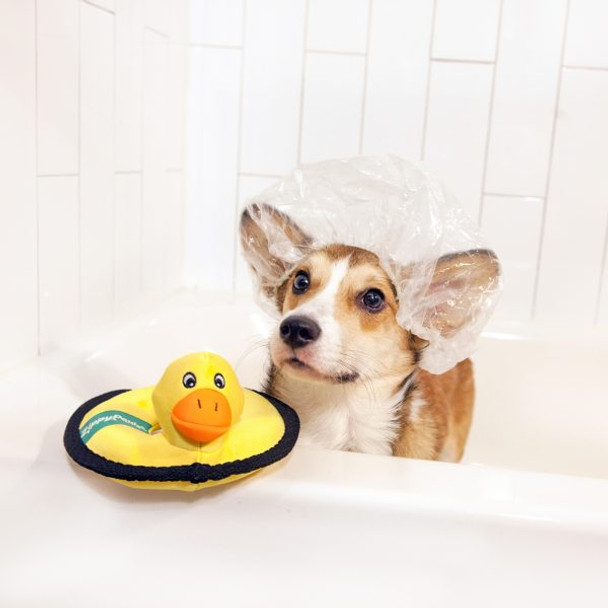 Floaterz Dog Water Toy - Duck