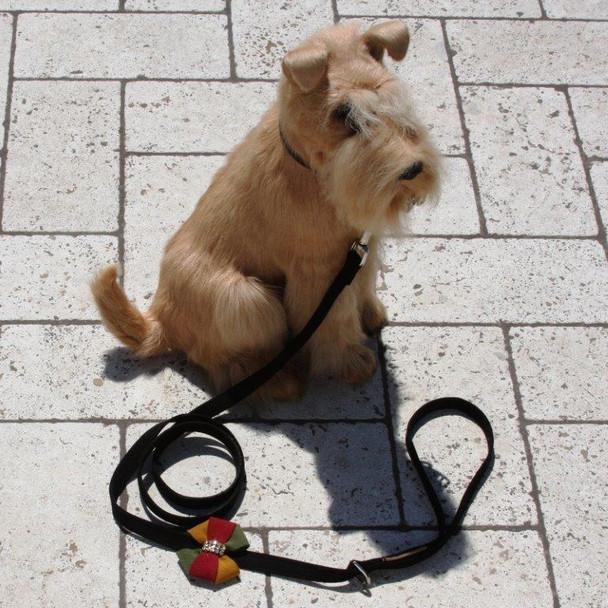 Autumn Bow Dog Leash - Susan Lanci