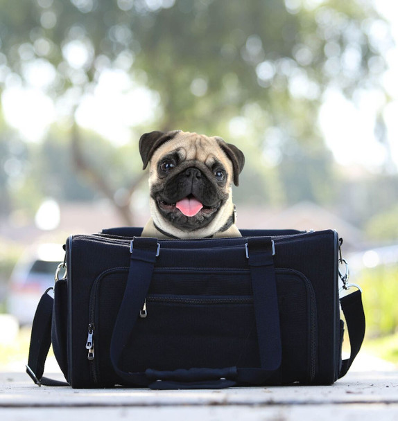 Hemp Eco Pet Dog Carrier - Black
