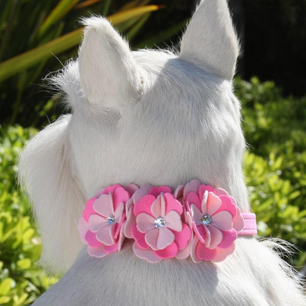 Alexandra Flowers Dog Collar & optional Leash