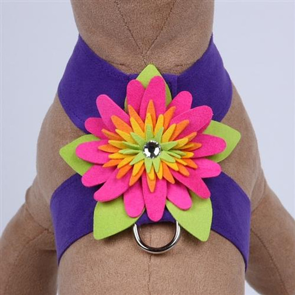 Design Your Own - Island Flower Dog Harness