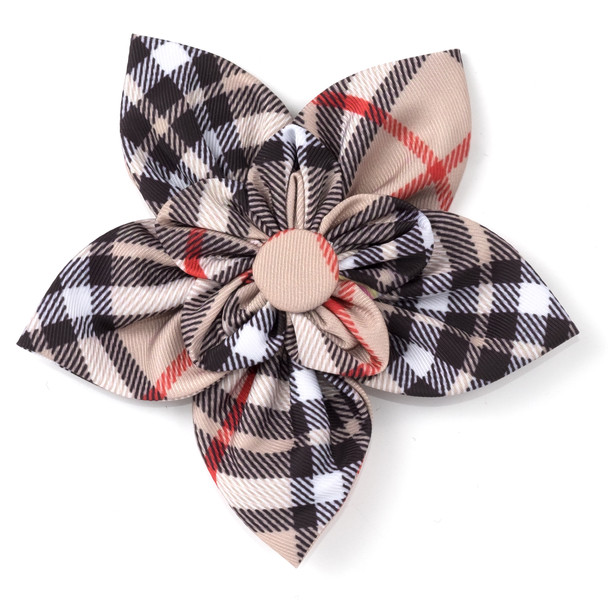 Bias Plaid Tan Pet Dog Collar Flower