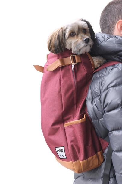Urban Pet Backpack Carrier - Maroon Red