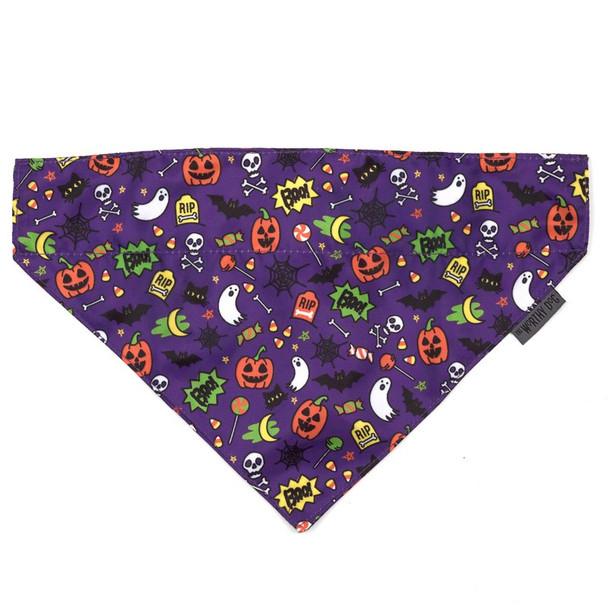 Fright Night Pet Dog Collar Bandana