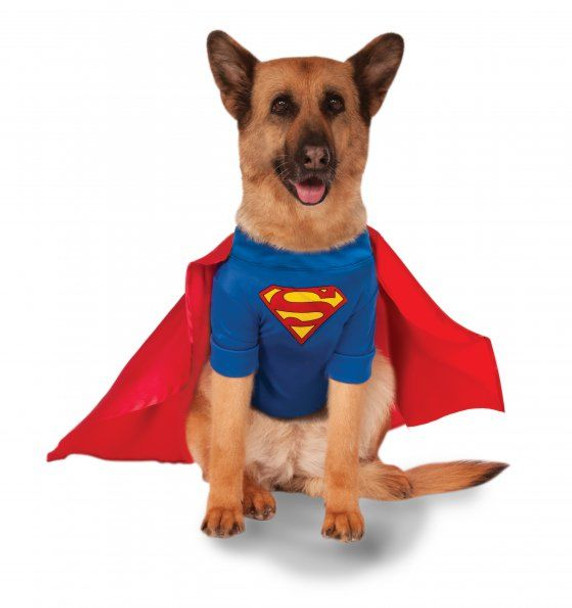 Big Dogs Superman Pet Costume