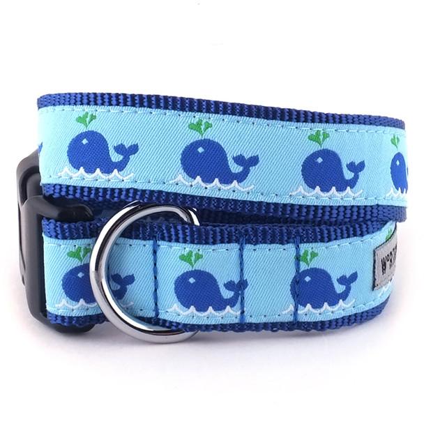 Squirt Pet Dog Collar & Optional Lead