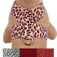 Cheetah Couture