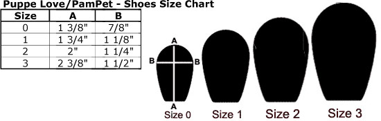 1111-pamp-shoe.jpg
