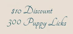 discount-10-3.jpg