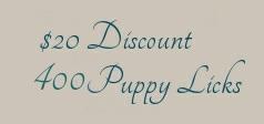 discount-20-1.jpg