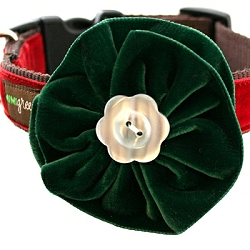 evergreen-velvet-dog-collar-flower250.jpg