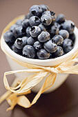 image-blueberries-100.jpg