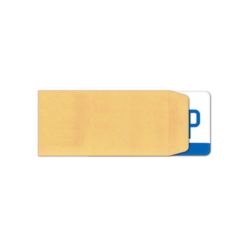 Plain Moist and Seal License Plate Envelopes