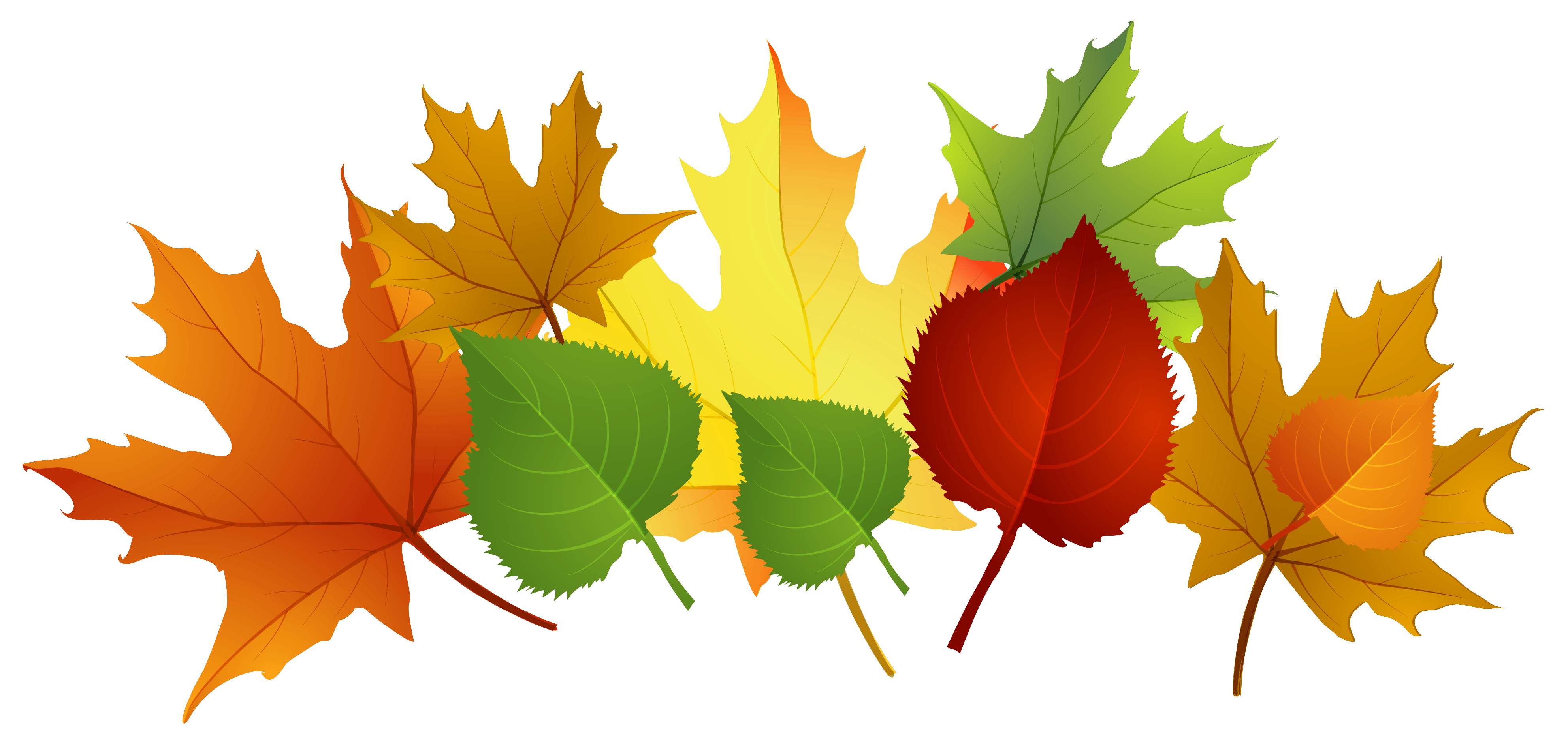 fall-leaves.png