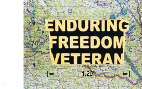 Enduring Freedom Veteran Hat Pin