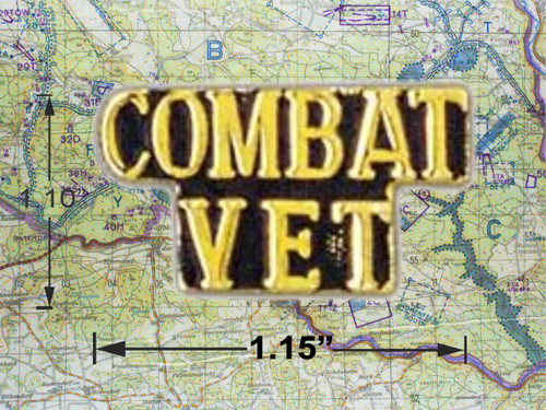 Combat Vet Hat Pin