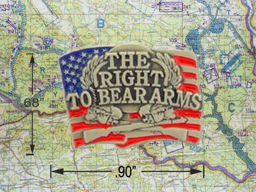 Right to Bear Arms Cap Pin