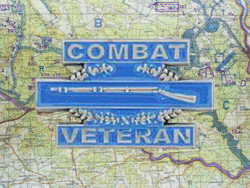 Combat Infantry Hat Pin K24