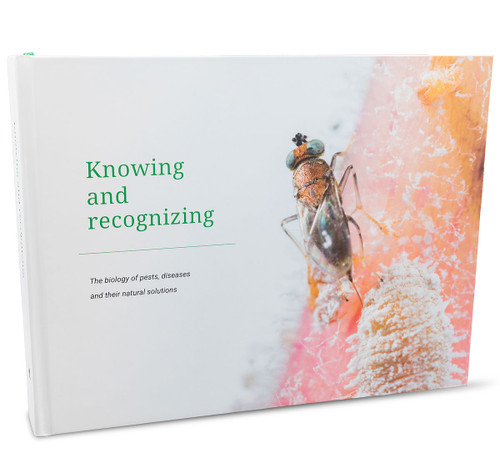 Knowing and Recognizing Book