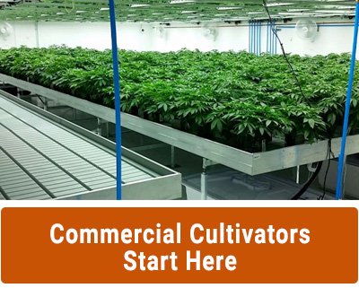 Commercial Cultivators Start Here