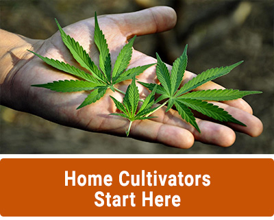 Home Cultivators Start Here