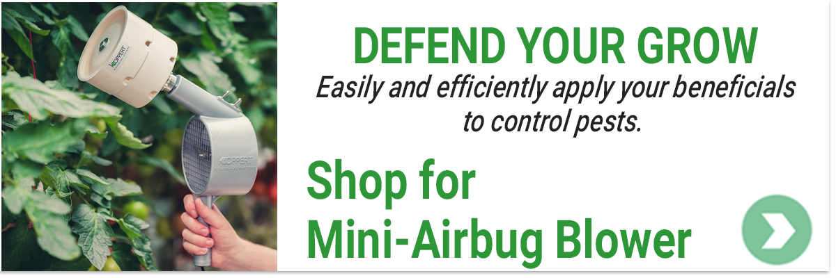 Shop for a Mini Air Bug for Your Grow