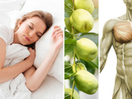 Which Minerals, Herbs And Nutrients Can Give You Better Quality Sleep?