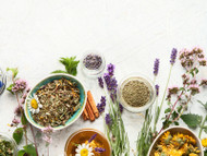 Herbs That May Support Women's Health