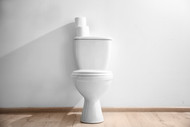 What is a Toilet Aid | Blooms The Chemist Blog