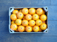 Is Vitamin C Really That Important For Immunity?