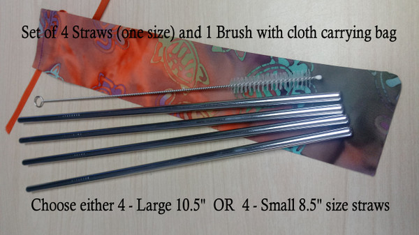 Reusable Straws and Brush Set