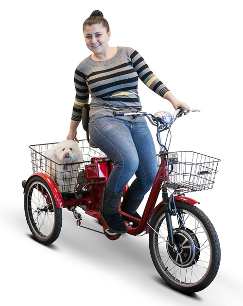 EW-29 Electric Trike with rider and dog