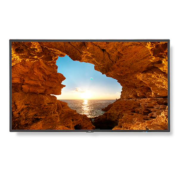 """55"""" Commercial-Grade Large Format Display with Integrated Tuner"""