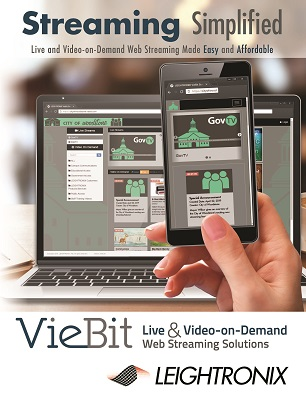 VieBit - Streaming Simplified