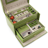Lime Leather Jewelry Box | TechSwiss TS382LME | Open Front
