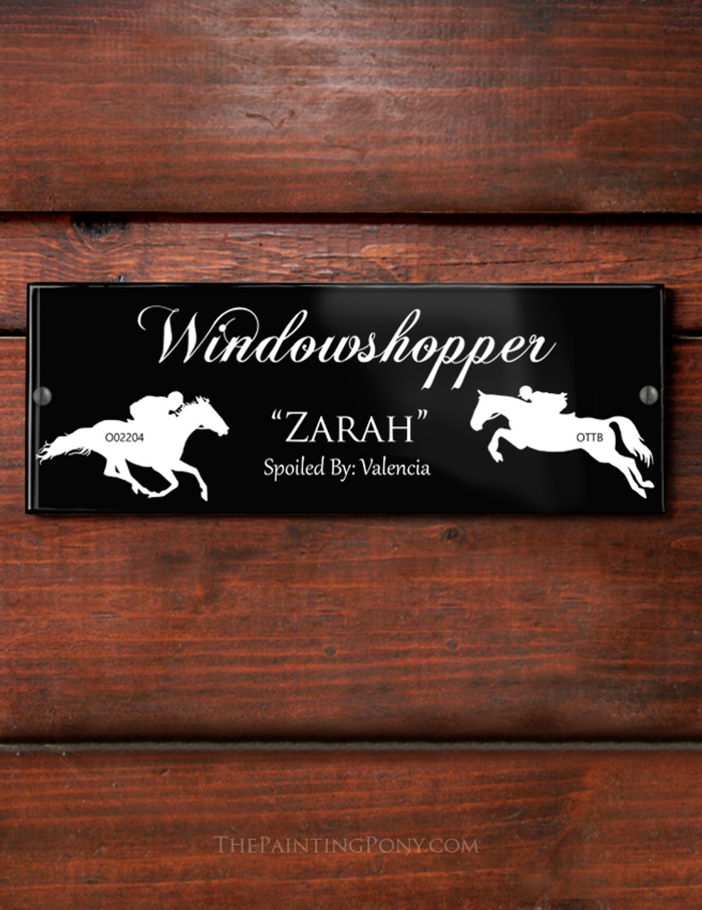 Custom Ex Race Horse Themed Acrylic Horse Stall Name Plate The Painting Pony