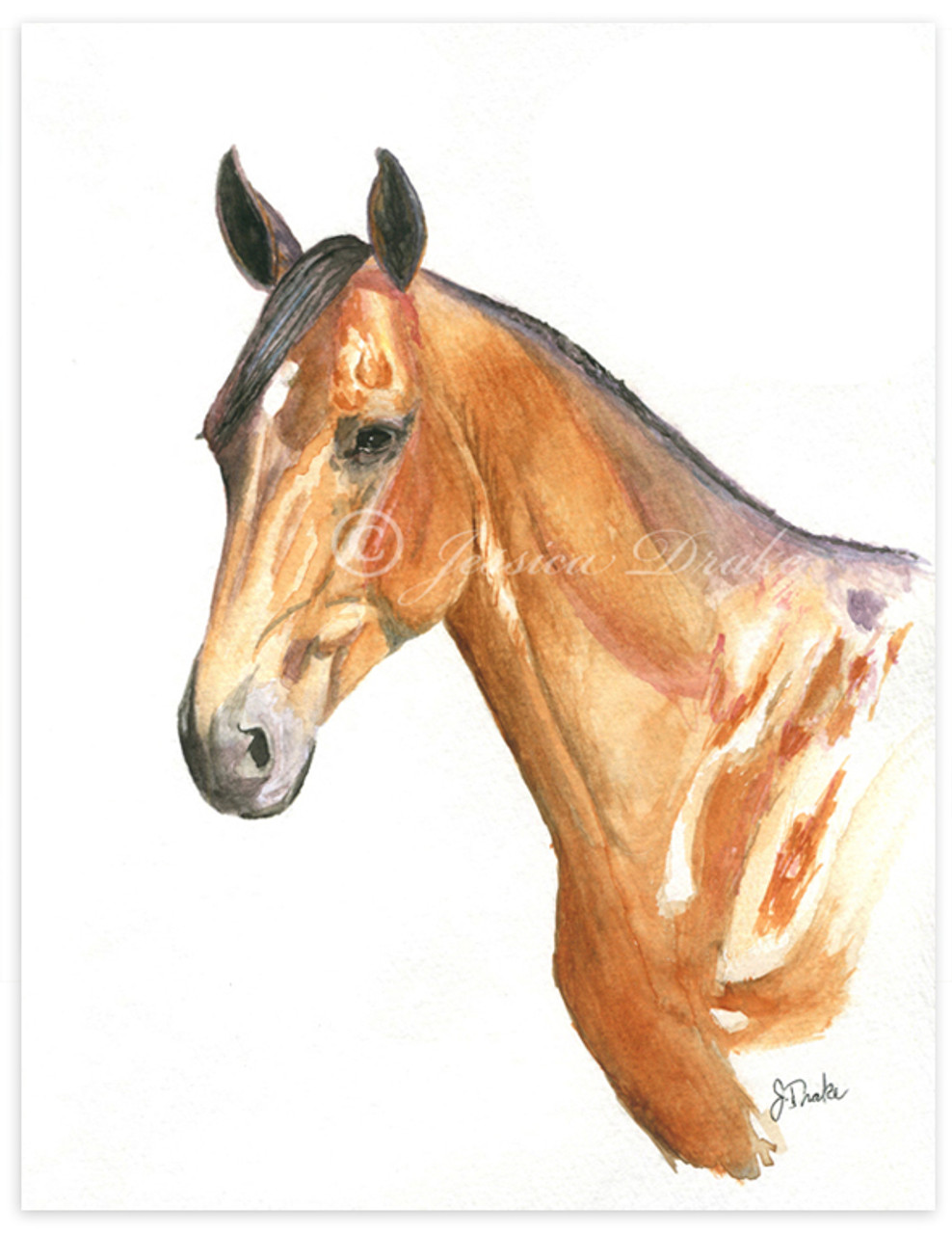 Custom Watercolor Horse Or Pet Portrait The Painting Pony