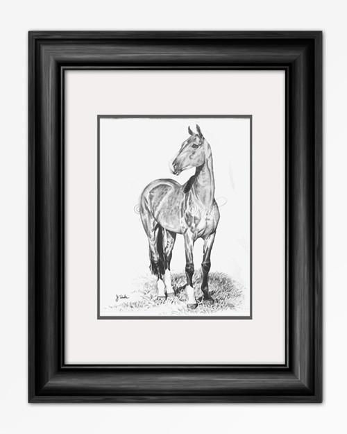 Graphite Horse Art Print