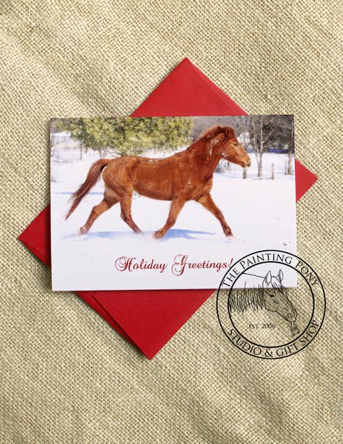 Trotting Pony Christmas Cards (10 pk)