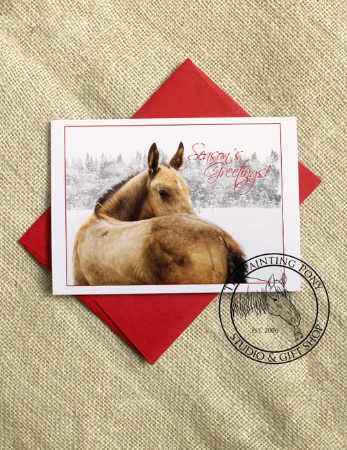 Christmas Foal Holiday Cards (10 pk)