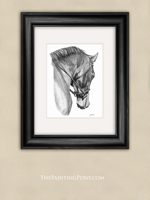 Horse Head Graphite Pencil Equestrian Fine Art Print